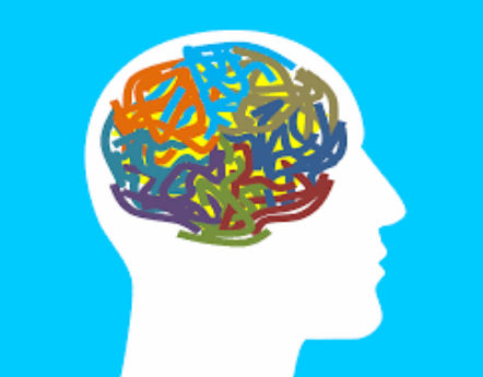 Your Emotional Brain and How to Deal With it