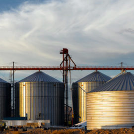 What is a Grain Elevator? Simple Explanation