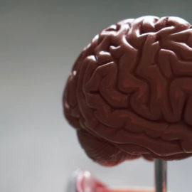 Limitations of Intelligence/IQ Testing: How Smart Are You Really?