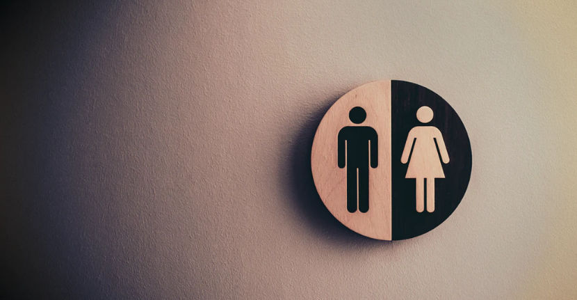 mezcla Condición curva  Jordan Peterson on Gender Equality: They're Not Equal | Shortform Books