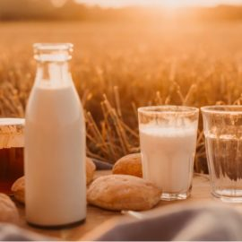 Calcium for Bones: You Shouldn't Get it From Dairy