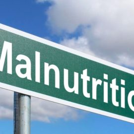 Protein-Energy Malnutrition: Animal Protein Isn't the Answer