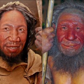 Homo Sapiens and Neanderthals: Did They Mate? Battle? Both?
