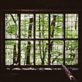 Environmental Context: Subtle Cues Change Your Behavior