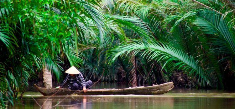 Tim O'Brien's Vietnam—The Horrifying Reality