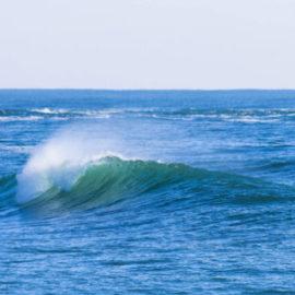 Four Actions Framework (Blue Ocean Strategy)