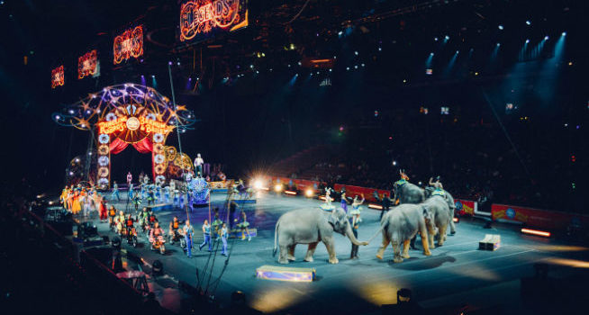Cirque du Soleil – Blue Ocean Strategy, Explained