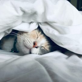 Ways to Improve Sleep: 27+ Tips to Try Tonight
