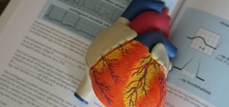 Coronary Heart Disease: Risk Factors and Prevention