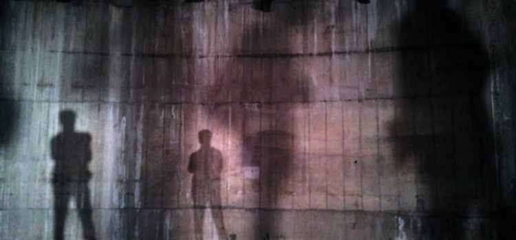 Deborah Lacks Pullum: A Life in the Shadow of HeLa