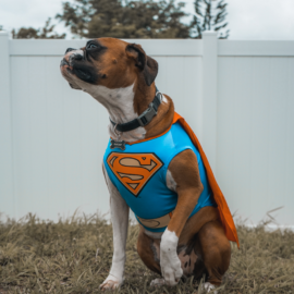 OKR Superpowers: 4 Ways to Boost Your Progress