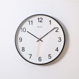 The Anti NMDA Receptor Encephalitis Clock Test