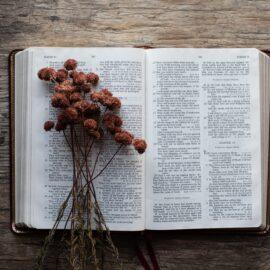 The Jesus Seminar: Scholars Meet About Jesus
