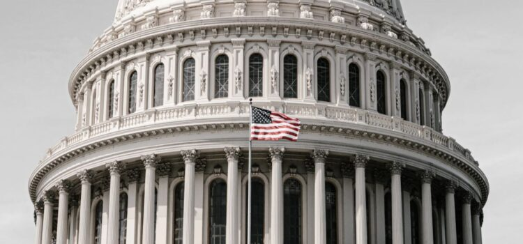 Do Checks and Balances in U.S. Government Work?