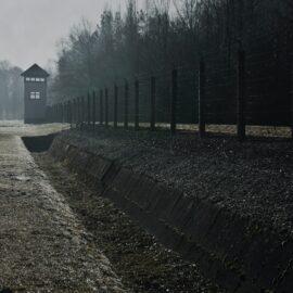 Racial Sentencing Disparities: Who Gets Locked Up?