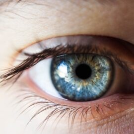 Human Eyesight: The Science of How We See