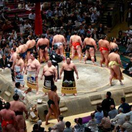 Kaizen Training: The Sumo Wrestler Strategy