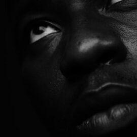 "Racial Segregation: Arbitrary ""Purity"" Standards"