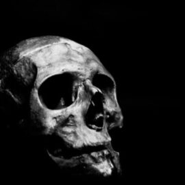 Neanderthal Extinction: Was It Caused By Humans?