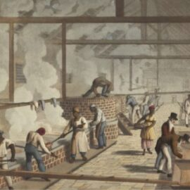 James Hammond: In Defense of Slavery