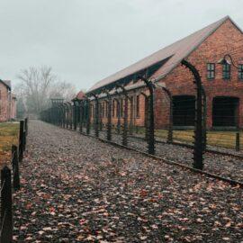 The Auschwitz Crematorium: Lale's Harsh Reality