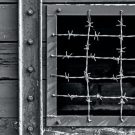 Leon: The Tattooist of Auschwitz Needed a Friend