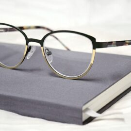 Economics in One Lesson by Henry Hazlitt: Overview