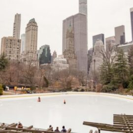 Trump and the Wollman Rink: Persistence Pays Off