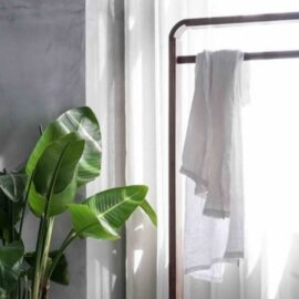 The Way of the Essentialist: Living a Clutter-Free Life