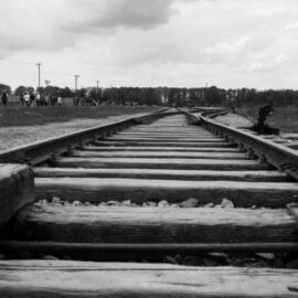 The End of Auschwitz: Lale and Gita Are Separated