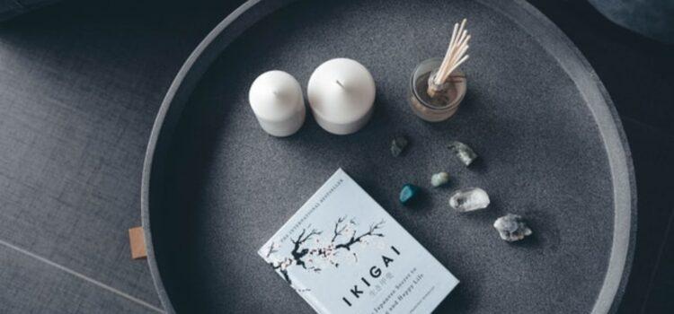 Overview: Ikigai by Héctor García and Francesc Miralles