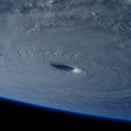 Hurricane Katrina and Obama: Reaction & Response