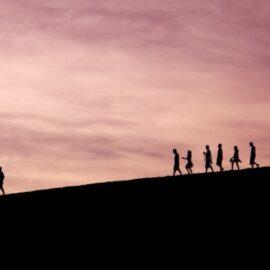 Pinnacle Leadership: What Happens at the Top?