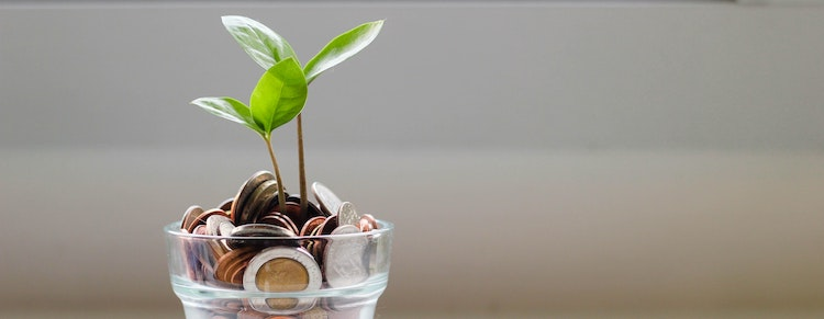 Build Savings and Let Your Money Work for You