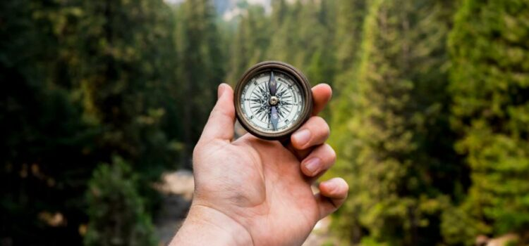 Finding Purpose in Life—Flow Isn't Everything