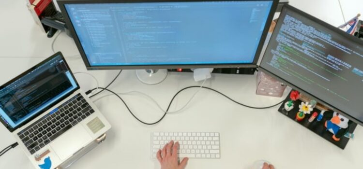 Testing in Software Development: What's It For?