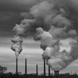 Environment and Economics: A Thorny History