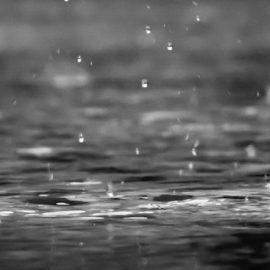 Environmental Effects of Acid Rain: The Tense Debate