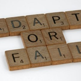 Adaptive Interventions in Leadership: Adapt or Fail