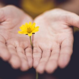 Embrace Grace: How to Be Open Without Seeking