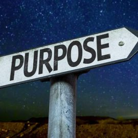 How to Find Your Major Definite Purpose in Life
