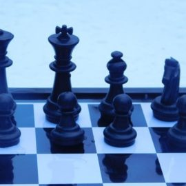 Adaptive Leadership Skills: Do You Have What It Takes?