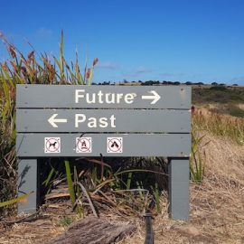 Learn From Your Past With Mental Time Travel